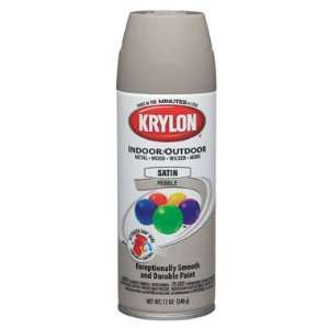 Decorator Indoor/Outdoor Aerosol Spray Paint