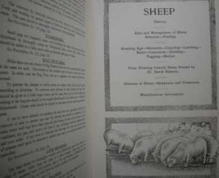 Animal BOOK / 1911 VTG VETS FARM HORSE COW SHEEP VETERINARIAN