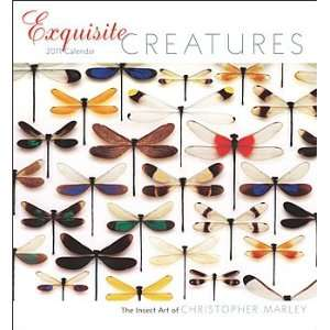 2011 Animal Calendars Exquisite Creatures   12 Month