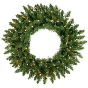 60 LED Lighted Camdon Fir Artificial Christmas Wreath   Warm White