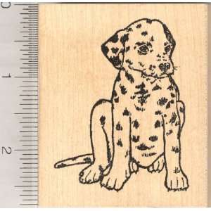 Large Dalmation Dog Rubber Stamp Arts, Crafts & Sewing